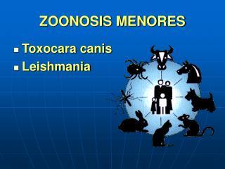 ZOONOSIS MENORES