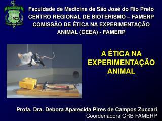 Faculdade de Medicina de S o Jos  do Rio Preto CENTRO REGIONAL DE BIOTERISMO   FAMERP COMISS O DE  TICA NA EXPERIMENTA
