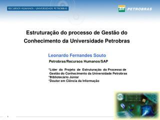 Estrutura  o do processo de Gest o do Conhecimento da Universidade Petrobras                         Leonardo Fernandes