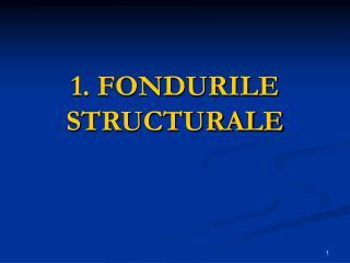 1. FONDURILE STRUCTURALE