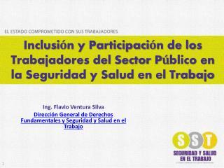 Inclusi n y Participaci n de los Trabajadores del Sector P blico en la Seguridad y Salud en el Trabajo