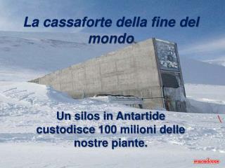 La cassaforte della fine del mondo     Un silos in Antartide  custodisce 100 milioni delle  nostre piante.