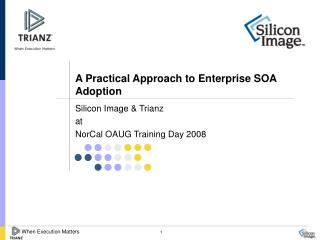 A Practical Approach to Enterprise SOA Adoption