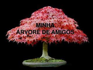MINHA  RVORE DE AMIGOS