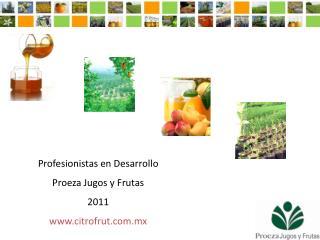 Profesionistas en Desarrollo Proeza Jugos y Frutas 2011 citrofrut.mx