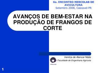 AVAN OS DE BEM-ESTAR NA PRODU  O DE FRANGOS DE CORTE