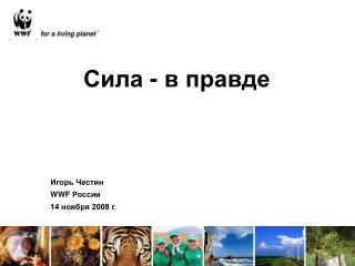 WWF  14  2008 .