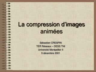La compression d images anim es
