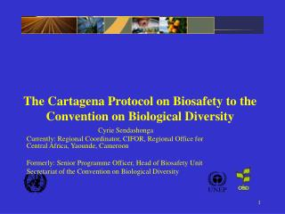 The Cartagena Protocol on Biosafety to the Convention on Biological Diversity