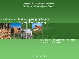 Koncepcyjny projekt linii  do gazyfikacji biomasy