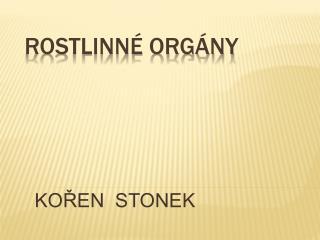 Rostlinn  org ny