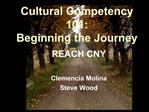 Cultural Competency 101: Beginning the Journey