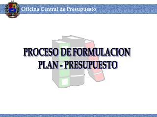 PROCESO DE FORMULACION  PLAN - PRESUPUESTO
