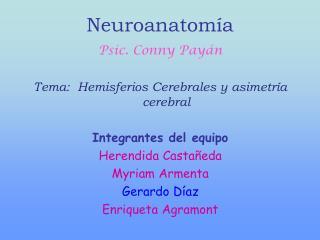 Neuroanatom a