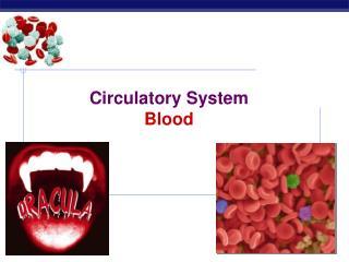 Circulatory System Blood