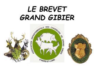 LE BREVET  GRAND GIBIER