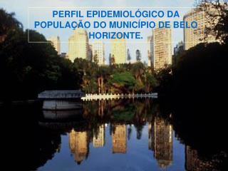 PERFIL EPIDEMIOL GICO DA POPULA  O DO MUNIC PIO DE BELO HORIZONTE.