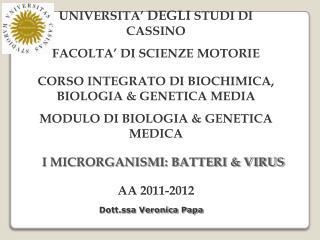 UNIVERSITA  DEGLI STUDI DI CASSINO FACOLTA  DI SCIENZE MOTORIE