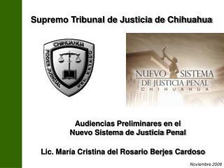 Lic. Mar a Cristina del Rosario Berjes Cardoso