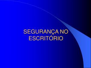 SEGURAN A NO ESCRIT RIO