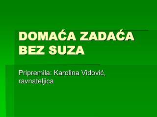 DOMACA ZADACA BEZ SUZA