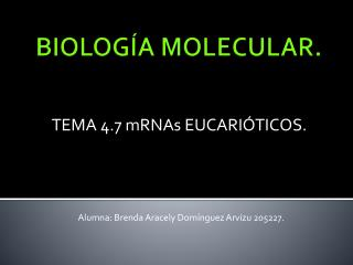 BIOLOG A MOLECULAR.