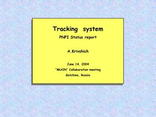 Tracking System - PNPI Status Report