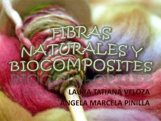 FIBRAS NATURALES Y BIOCOMPOSITES