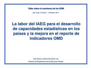 La labor del IAEG para el desarrollo de capacidades estad sticas en los pa ses y la mejora en el reporte de indicadores