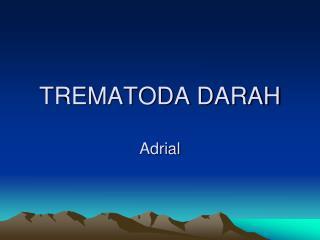 TREMATODA DARAH  Adrial
