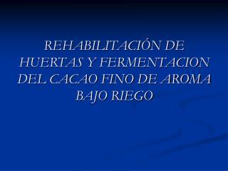 REHABILITACI N DE HUERTAS Y FERMENTACION DEL CACAO FINO DE AROMA BAJO RIEGO