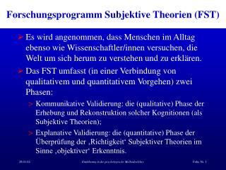 Forschungsprogramm Subjektive Theorien FST