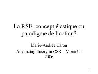 La RSE: concept  lastique ou paradigme de l action