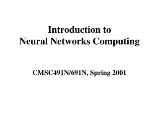 Introduction to  Neural Networks Computing