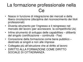 La formazione professionale nella Ce