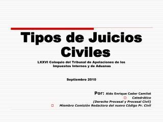Tipos de Juicios Civiles LXXVI Coloquio del Tribunal de Apelaciones de los  Impuestos Internos y de Aduanas Septiembre 2