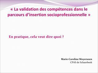 La validation des comp tences dans le parcours d insertion socioprofessionnelle