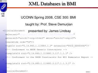 XML Databases in BMI