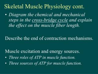 Skeletal Muscle Physiology cont.