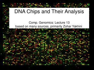DNA Chips and Their Analysis  Comp. Genomics: Lecture 13 based on many sources, primarily Zohar Yakhini