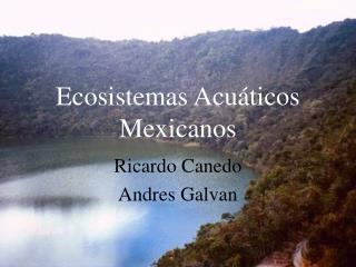 Ecosistemas Acu ticos Mexicanos