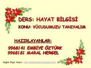 HAZIRLAYANLAR:    9968141 EMBIYE  ZT RK 9968181 MARAL HERGEL