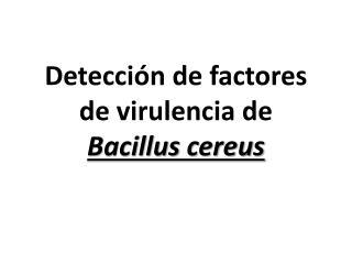 Detecci n de factores de virulencia de Bacillus cereus