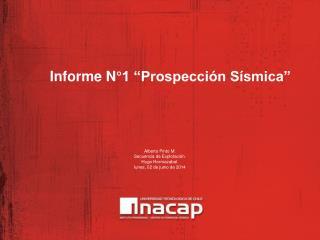 Informe N 1  Prospecci n S smica