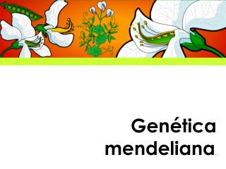 Gen tica mendeliana.