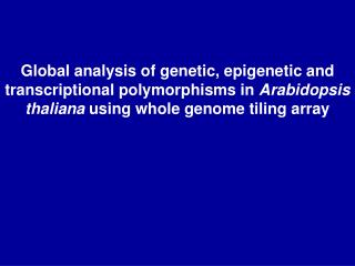 Global analysis of genetic, epigenetic and transcriptional polymorphisms in Arabidopsis thaliana using whole genome tili