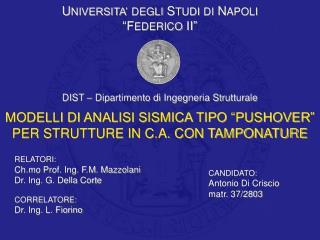 UNIVERSITA  DEGLI STUDI DI NAPOLI  FEDERICO II