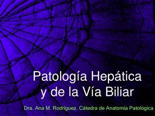 Patolog a Hep tica  y de la V a Biliar