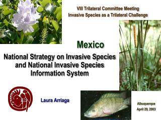 National Strategy on Invasive Species and National Invasive Species Information System
