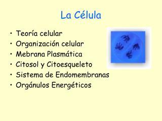 La C lula